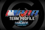 Team-Profile-Damage